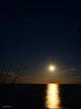 След изгрева на луната... ; comments:2