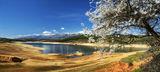 Пролет - Централна Средна гора ; comments:41