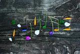 Цветомузика .... ; comments:10
