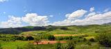 Родопите, някъде по път за Кърджали ; comments:6