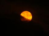 Преминаване на Венера пред Слънцето и петна ; comments:4