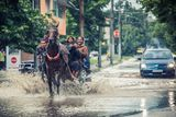"""""""Там където машината спира - конят продължава!"""" ; comments:76"""