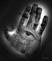 Портрет на един криминално проявен ; comments:4