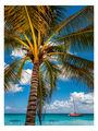 Доминиканска република ; comments:2