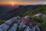 Утро в Балкана! ; Comments:51