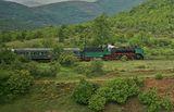 Зелено пътешествие ; comments:17