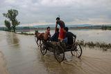 Потопът в Северозападна България ; comments:7