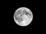 Супер Луна ; comments:20