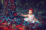 Butterflies ; Comments:7