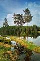 Разливи край Широка поляна ; comments:17
