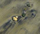 плажен портрет ; comments:15