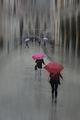 Дъжд няма да вали.... ; Comments:48