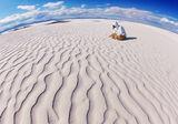 Пап и белите пясъци... ; comments:60
