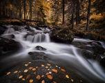 Бистришка река ; comments:43
