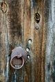 Голямата порта с премрежени от сълзи очи, която чака с  една скрита надежда... ; Comments:23