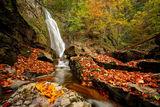 Есенно шарено. ; comments:26