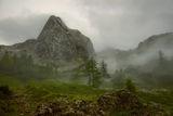 Мъгливите планини ; comments:64