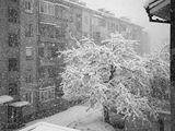 Октомврийска зима... ; comments:43