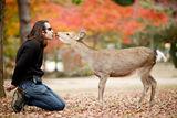 Селфче с еленче ;) ; comments:122