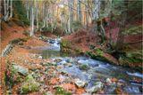 Есен по поречието на Стара река ; comments:72