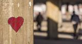 Любовта...как я подминаваме ежедневно... ; comments:6