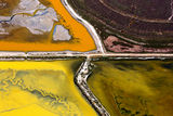 San Francisco Bay Salt Marshes ; comments:39