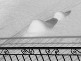 """Снежно селфи"" под ""юргана""... ;) ; comments:53"