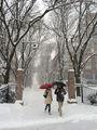 Зима ; No comments