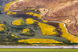 Coyote Hills, California ; comments:26
