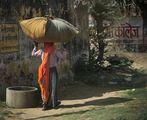 Шийни прешлени-Някъде в Раджастан ; comments:40