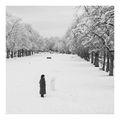 За хората и снежните човеци ; comments:15