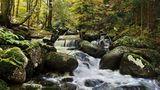 Владайската река ; comments:41