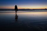 Следи по пясъка ; comments:9