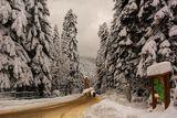 Зима!!! ; comments:36