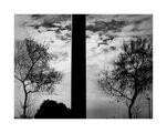 Лист от дърво ; comments:44