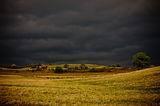Спокойствие пред буря ; Comments:21