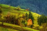 Цветовете на есента ; comments:35