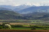 Стара планина – централна*** ; comments:77