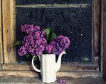 Пролетно ухание ; comments:21