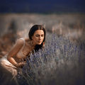 Lavender me ; comments:18