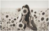Слънчогледово момиче.. ; comments:32