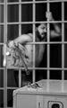 'Креативност' из Prison break :) ; comments:27