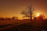 sunset ; comments:24