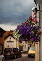 Малките радости на малкия град ; comments:25