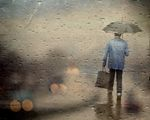 Rain.... ; comments:55