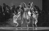 """""""Реквием"""" – музикално-танцов спектакъл ; comments:4"""