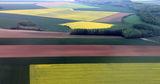 Френска земя ; comments:13