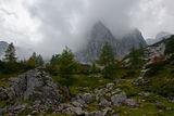 Есен там вият и сплитат се гъсти мъгли ; comments:28