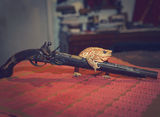 Въоръжен и много опасен :-) ; comments:17