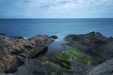 Септемврийско море. Резово. ; Comments:8